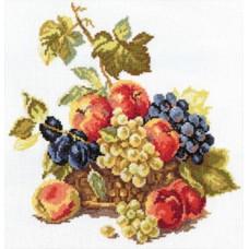 "5-04 ""Яблоки и виноград"""